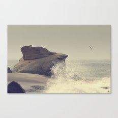 Laguna Beach #17 Canvas Print