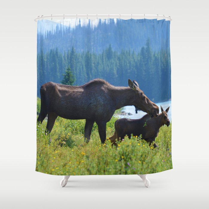 Mother moose & calf at Maligne Lake in Jasper National Park Shower Curtain