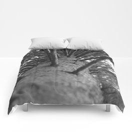 tree black and white photo Comforters
