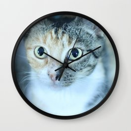 Revina the Cat with the Precious Face Wall Clock