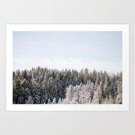Snowy Treetops Art Print