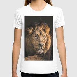 Mr. Lion King - Close up lion portrait T-shirt