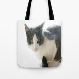 A Max And Mantle Bi Colour Cat Isolated Tote Bag