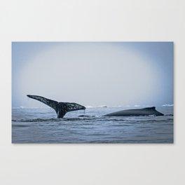 Stupendous Canvas Print