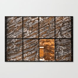 Petrified Window Canvas Print