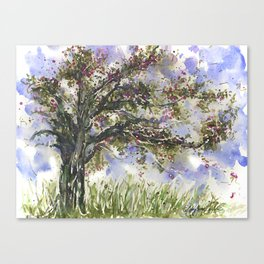 Springtime Fairy Tree watercolor by CheyAnne Sexton Canvas Print