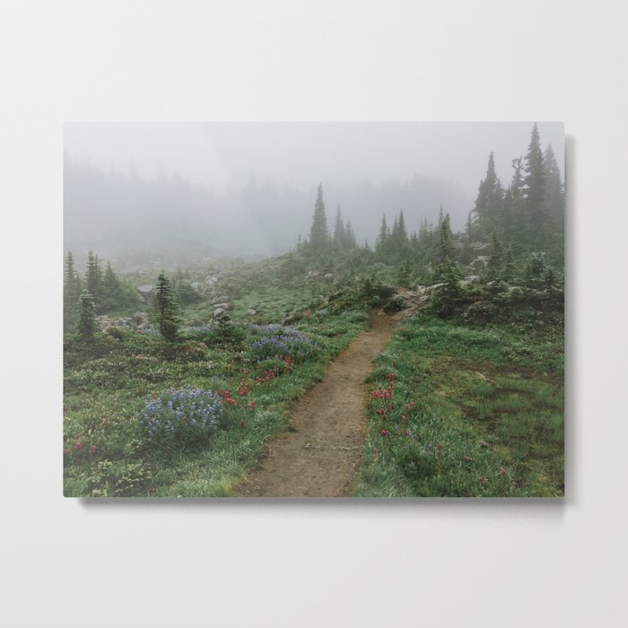 Washington Wildflower Fog Metal Print