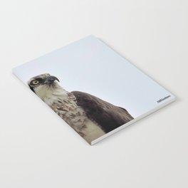 Osprey Notebook