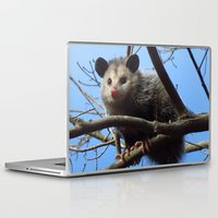 alabama Laptop & iPad Skins featuring Alabama Possum by Chuck Buckner