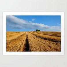 Harvest on Romney Marsh Art Print