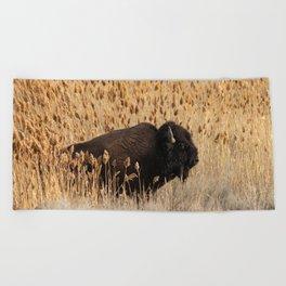 Bison - Antelope Island, Great Salt Lake, Utah Beach Towel