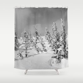 Winter day 26 Shower Curtain