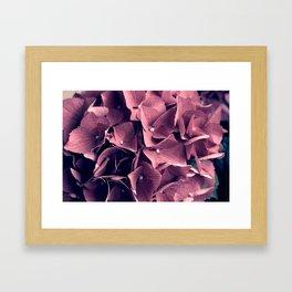Many tiny pink flowers Framed Art Print