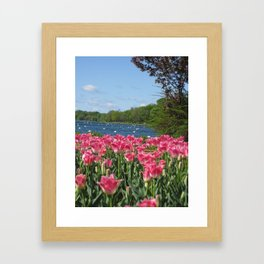 Flowers by the Lake!  Framed Art Print