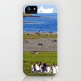 King Penguins on the beach with an Iceberg behind iPhone Case