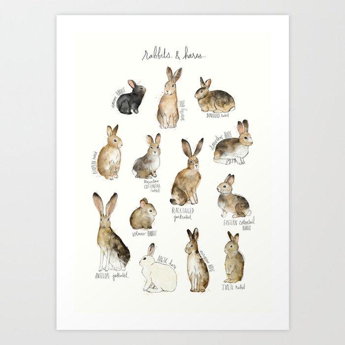 Rabbits & Hares Kunstdrucke
