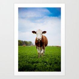 Die Kuh macht Muh Art Print