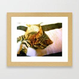 Manzanita Framed Art Print