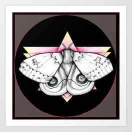 Automeris io - Io Moth Art Print