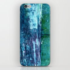 wood fence iPhone & iPod Skin