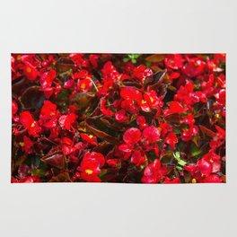 Red flower pattern Rug