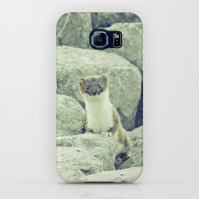 Stoat be Alarmed iPhone Case