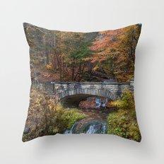 the Stone Bridge Throw Pillow