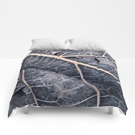 Organic Winter Decay Comforters