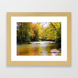 Pebble Creek Framed Art Print