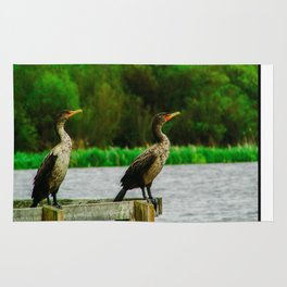 Cormorants Enjoying their View Rug