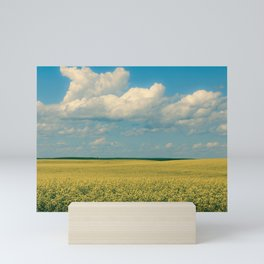 Prairie Summer; big blue skies and golden canola fields  Mini Art Print