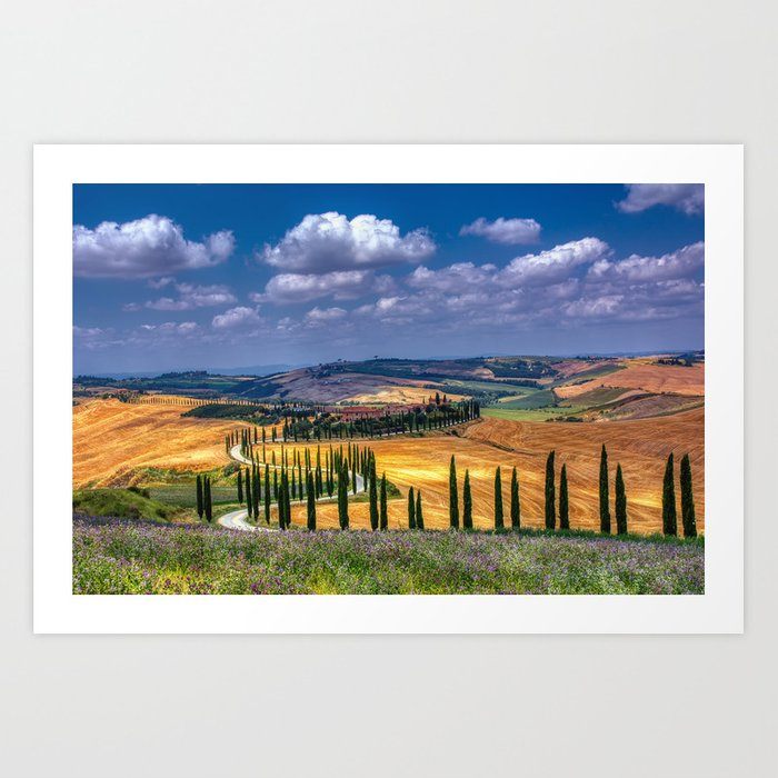 Cypress trees and meadow with typical tuscan house Kunstdrucke