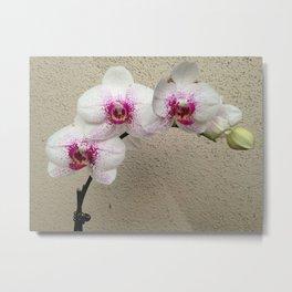 Arch de Orchid Metal Print