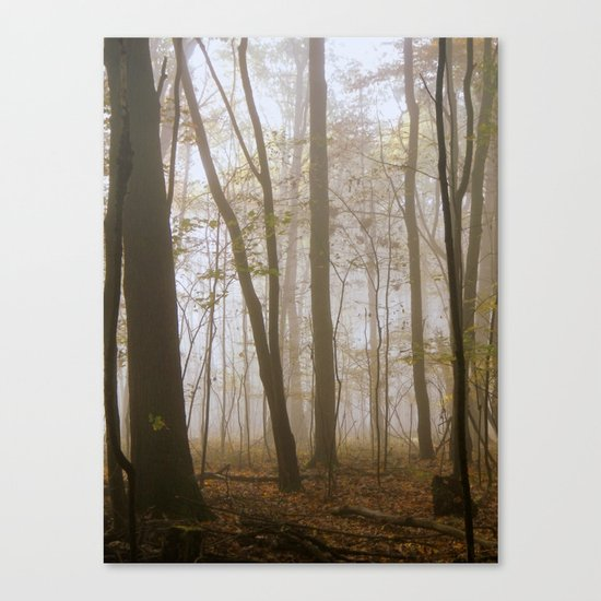 Lose Yourself Canvas Print