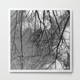 Wintry Branches Metal Print