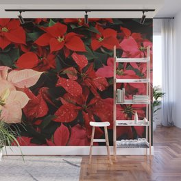 Crimson Red Poinsettia Christmas Holiday Flowers Wall Mural