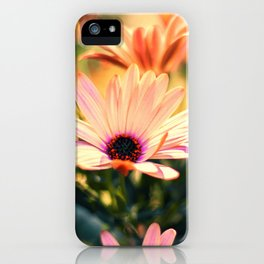 A Piece of Summer iPhone Case
