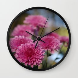 Rosy Chrysanthemum with gold leaves, blue sky Wall Clock