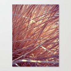 autumn straw Canvas Print