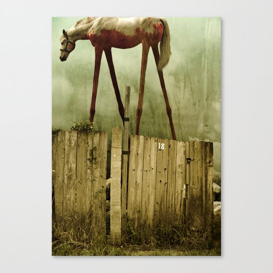The Painted Horse Canvas Print