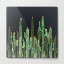 Cactus 4 at night Metal Print