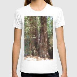 Coastal Redwoods T-shirt