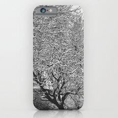 Snowy Trees iPhone 6s Slim Case
