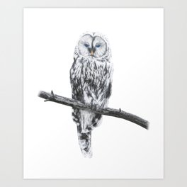 Owl of freedom Art Print