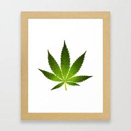 Marijuana Leaf Framed Art Print