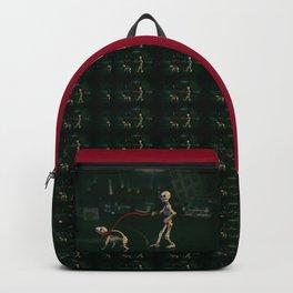 The Dog Walker Backpack