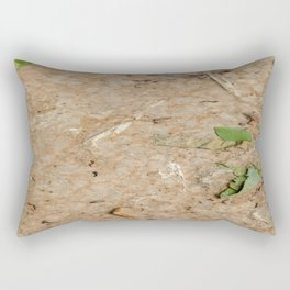 Remains at the Surface II, Killing Fields, Cambodia Rectangular Pillow