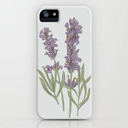 Lavender Flower Illustration iPhone Case