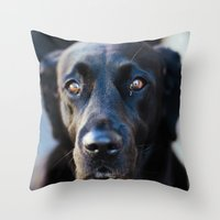 butcher billy Throw Pillows featuring Billy by Lawrie Brewster