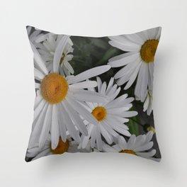 Daisies in Alaska Throw Pillow